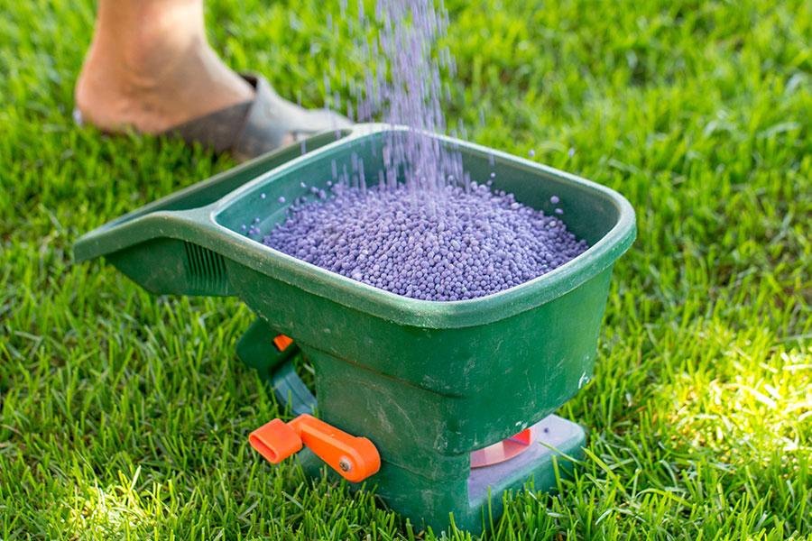 Fyller på handspridare för att gödsla gräsmatta