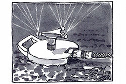 illustration-8