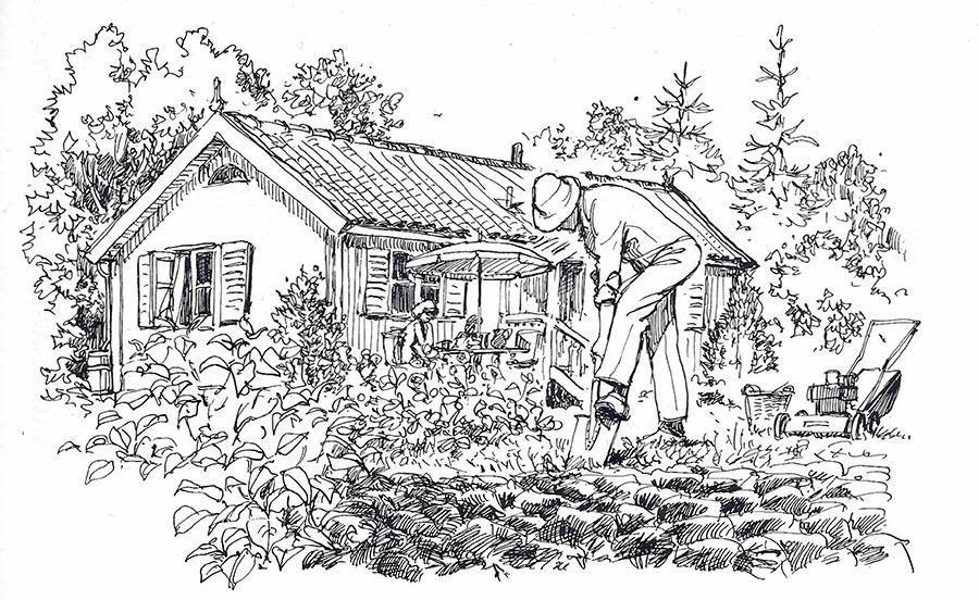 Omläggning av gräsmatta