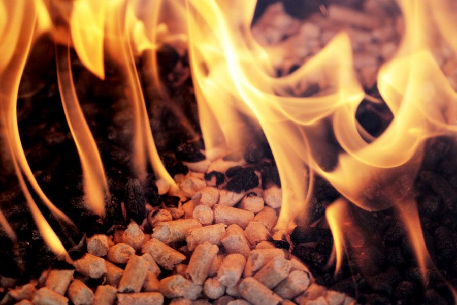 Brinnande pellets i en pelletspanna
