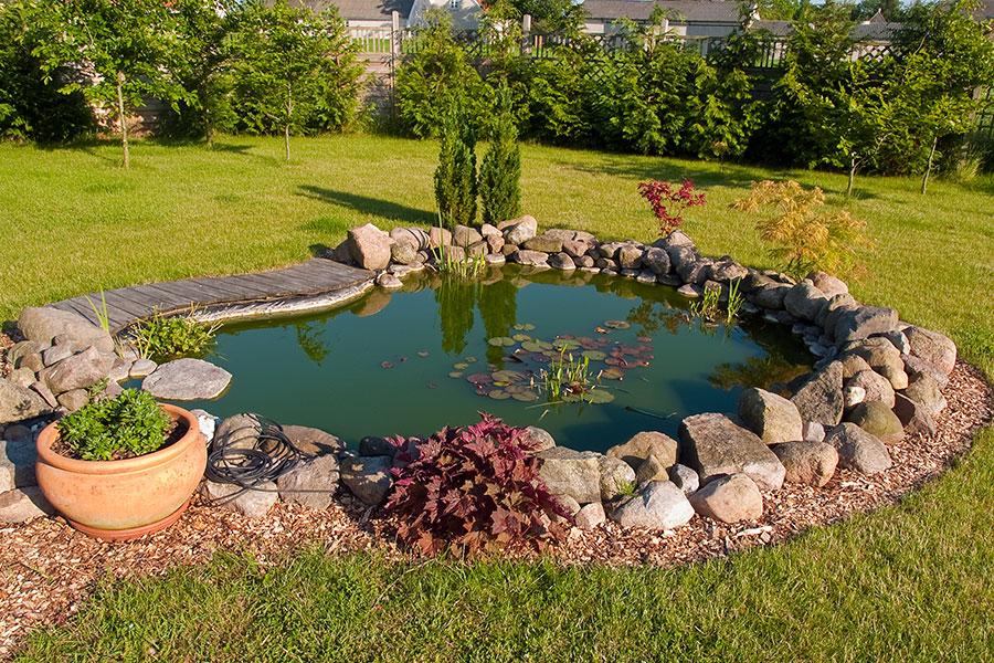 Vacker damm i trädgård