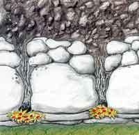 Om du vill plantera växter i muren bör du göra det medan muren läggs