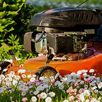 Gräsklippare med besinmotor