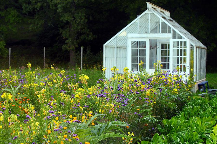 Placering av växthus