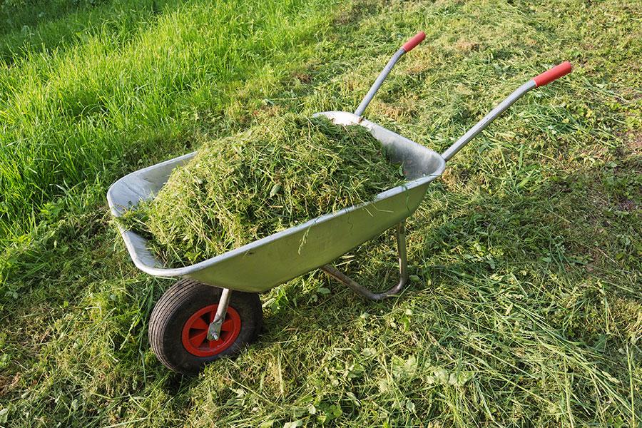 Skottkärra med gräs