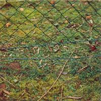 Spänntråd eller taggtråd under nätet.