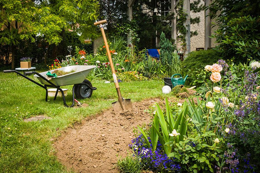 Trädgårdsredskap i trädgården