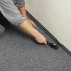 Pressar med saxens skänklar in mattan mot väggen