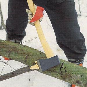 Kvistning av trädstam med yxa