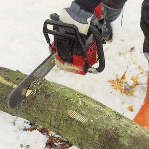 Steg 2. Sågar spår med motorsåg på ovansidan av trädstammen.