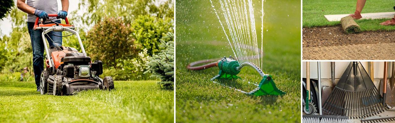 Tips om gräsmatta och underhåll