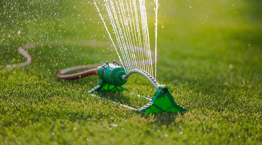 vattning-av-grasmatta.jpg
